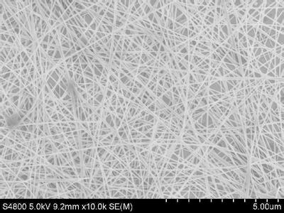 Silver Nanowire